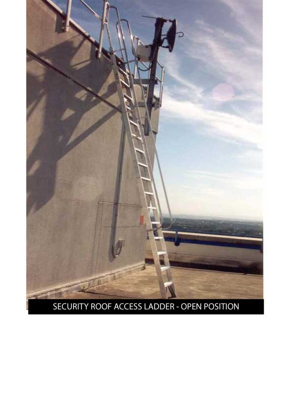 Custom Manufacturing Service - Security Roof Access Ladder in open position